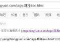 url包含中文不利于搜索引擎收录